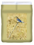 Bluebird In February Duvet Cover