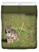 Bobcat - Wildcat Beach Duvet Cover