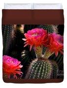 Sonoran Spring Duvet Cover
