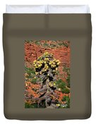 Cactus Outside The Chapel Of The Holy Cross Duvet Cover