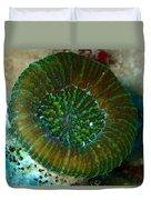 Cactus Ring Coral Duvet Cover