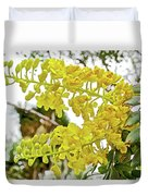Caesalpinia Cacalaco In Huntington Desert  Gardens In San Marino-california  Duvet Cover