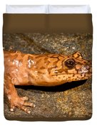 California Giant Salamander Duvet Cover
