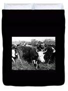 Cattle: Longhorns Duvet Cover