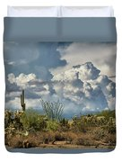 Chasing Clouds Again  Duvet Cover