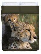 Cheetah Acinonyx Jubatus And Cub Duvet Cover