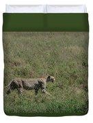 Cheetah On The Serengeti Duvet Cover