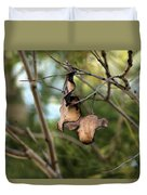 Coffee Brown Pods Duvet Cover