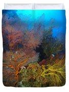 Colorful Assorted Sea Fans And Soft Duvet Cover