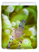 Commensal Shrimp On Green Anemone Duvet Cover by Steve Jones