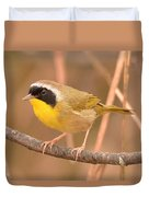Common Yellow-throat Duvet Cover
