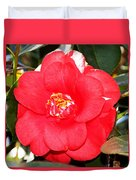 Coral Camellia At Pilgrim Place In Claremont-california  Duvet Cover
