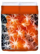 Coral, Close-up Duvet Cover