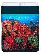 Coral Reef Scene Duvet Cover