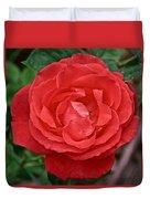 Coral Rose At Pilgrim Place In Claremont-california Duvet Cover