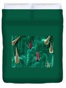 Corn Leaf Stomata, Esem Duvet Cover
