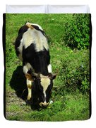 Cow In A Field Duvet Cover