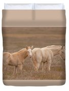 Cremello Brothers Duvet Cover