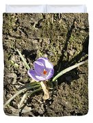 Crocus 1 Duvet Cover