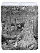 Cypress Trees I V Duvet Cover