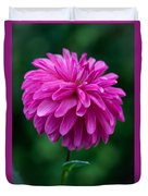 Dahlia Field Duvet Cover