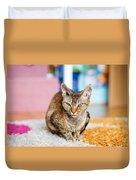 Devon Rex Purebred Domestic Cat Duvet Cover