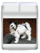 Dog At The Port Of Olympia Duvet Cover