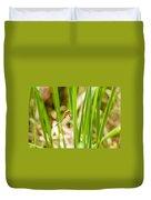 Dragonfly On Reed Leaf Duvet Cover