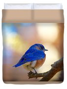 Eastern Bluebird Duvet Cover
