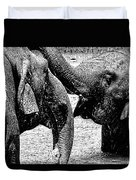 Elephants At Play Duvet Cover