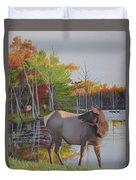 Elk Country Evening Duvet Cover