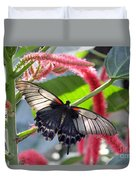 Exotic Butterflies At Rhs Wisley Surrey Uk Duvet Cover