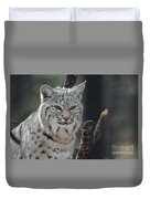 Face Of A Canadian Lynx Duvet Cover