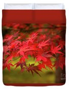Fall Color Maple Leaves At The Forest In Aomori, Japan Duvet Cover