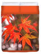Fall Color Maple Leaves At The Forest In Kochi, Japan Duvet Cover