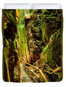 Flume Gorge Duvet Cover