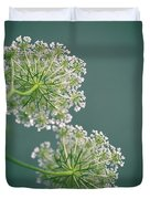 Fragile Dill Umbels On Summer Meadow Duvet Cover by Nailia Schwarz