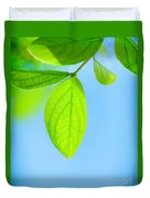 Fresh Green Leaves Duvet Cover