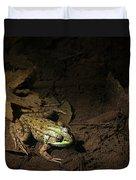 Frog 4 Duvet Cover