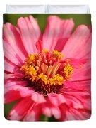 Fuchsia Pink Zinnia From The Whirlygig Mix Duvet Cover