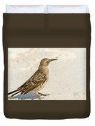 Galapagos Hood Mockingbird Duvet Cover