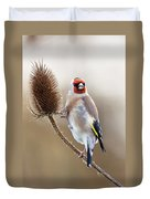 Goldfinch On Teasle Duvet Cover