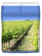 Grapevines In A Vineyard Duvet Cover