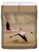 Greater Flamingos Phoenicopterus Roseus Duvet Cover