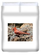 Hungry Cardinal Duvet Cover