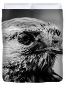 Harris Hawk   Duvet Cover