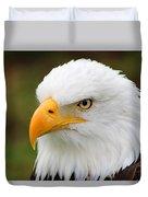 Head Of An American Bald Eagle Duvet Cover