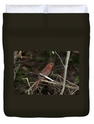 Hepatic Tanager At The Coba Ruins Duvet Cover