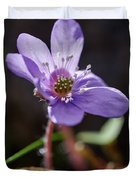 Hepatica 4 Duvet Cover