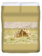Himalayan Marmots Pair Kissing In Open Grassland Ladakh India Duvet Cover